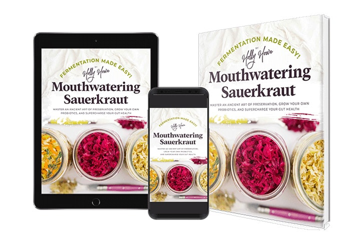 Mouthwatering Sauerkraut book cover